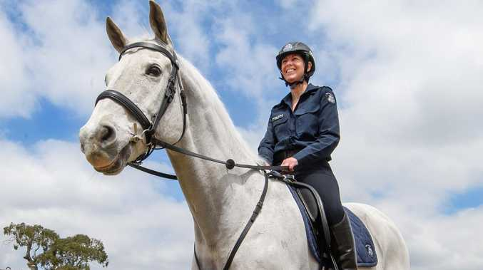 The popular police horse that just keeps defying the odds