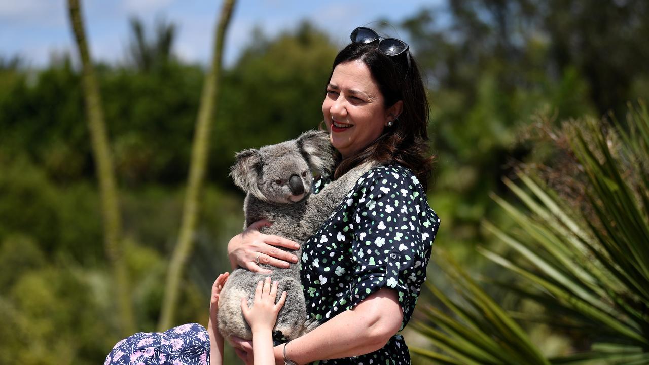 Queensland Premier Annastacia Palaszczuk hugs a koala at Australia Zoo. Picture: NCA NewsWire / Dan Peled