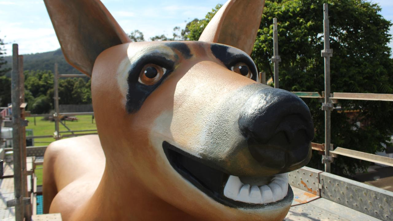 The Golden Dog is a must see on the Orara Valley Tourist Trail. Photo: Tim Jarrett