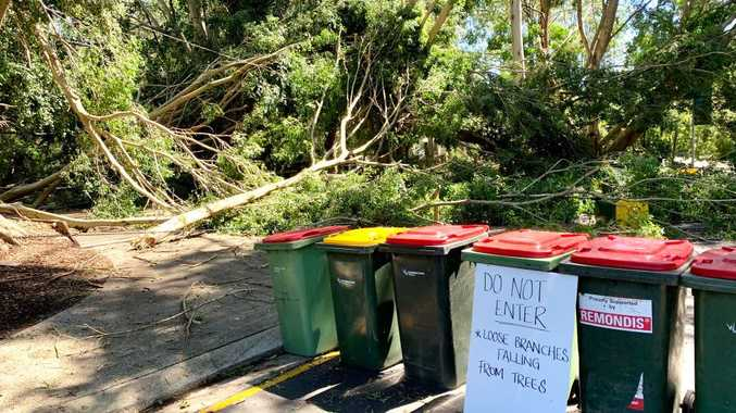 Trees down, trampoline into powerline: Storm smashes Coast