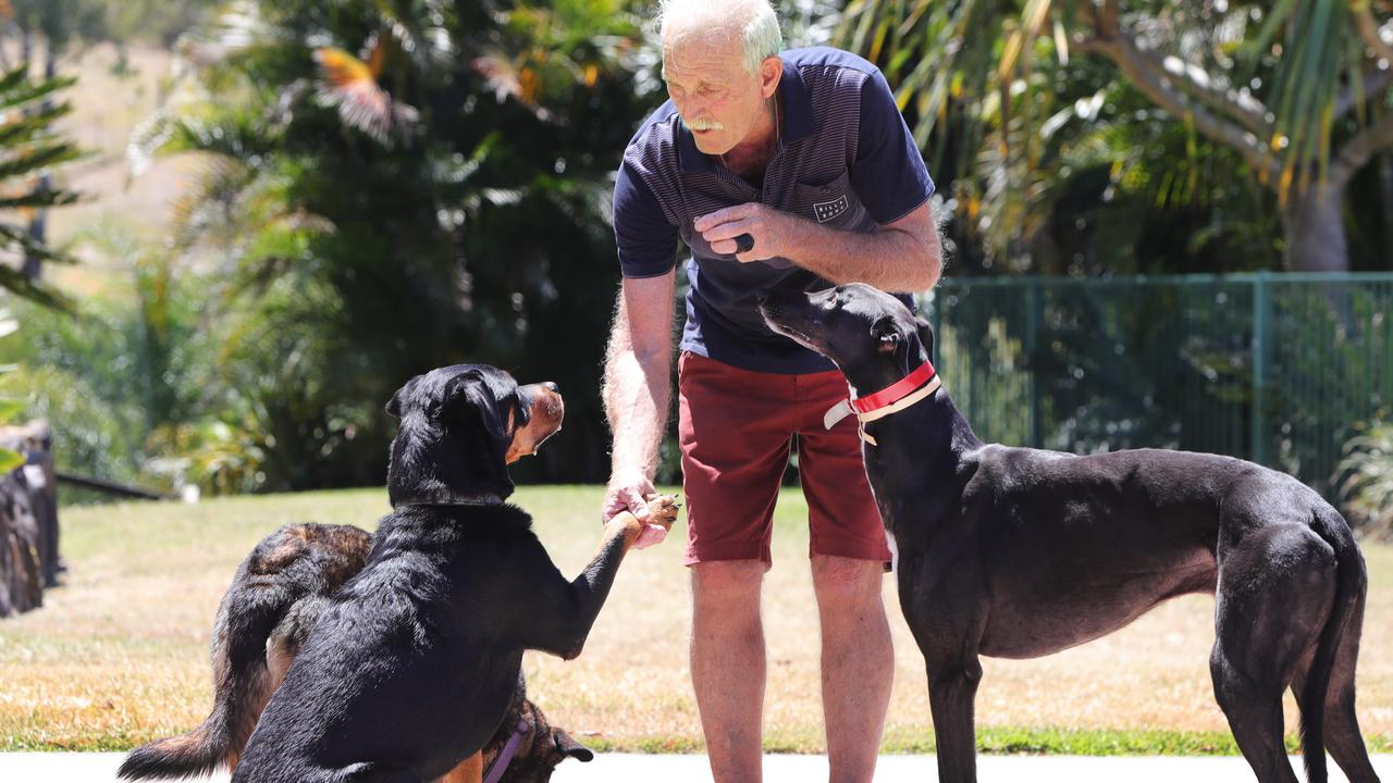 Tony Zammit teaching Zeta the rottweiler and Harley the greyhound table manners. Picture: Glenn Hampson.