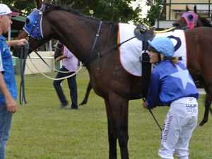 Pick a winner: Loads of Mackay horses this Melbourne Cup