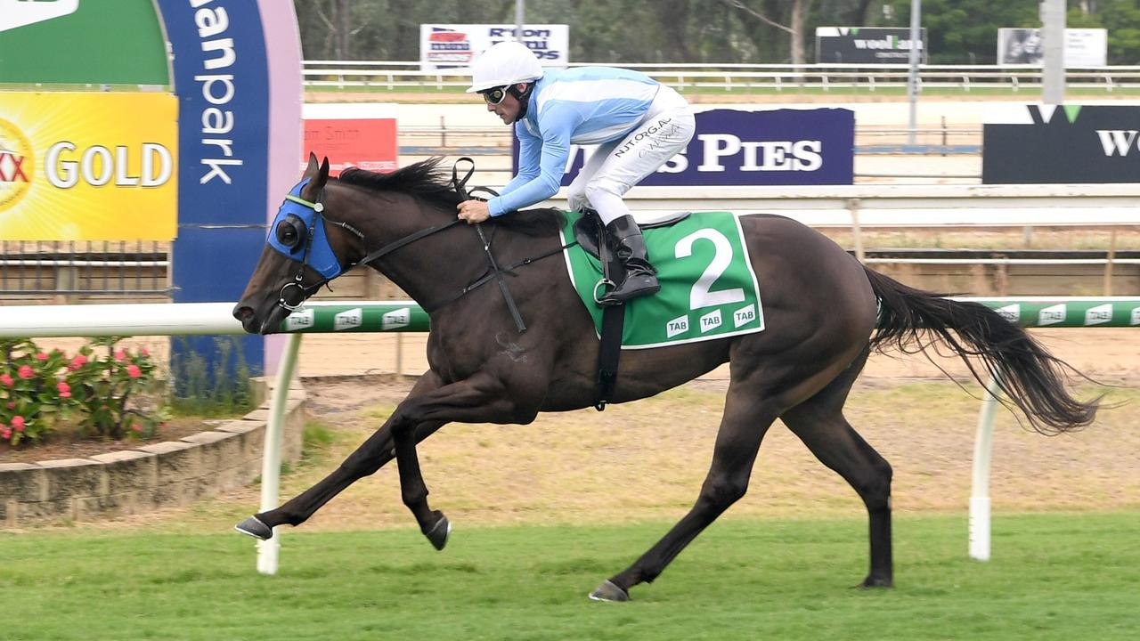 Master Jamie will race in the $125,000 Canadian Club Open Quality Handicap (1100m) at Doomben this afternoon.