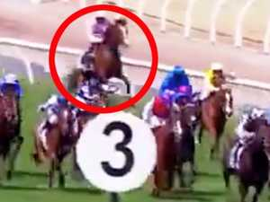 Another tragedy as Melbourne Cup horse dies