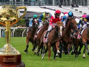 Horse euthanised after breaking leg in Melbourne Cup