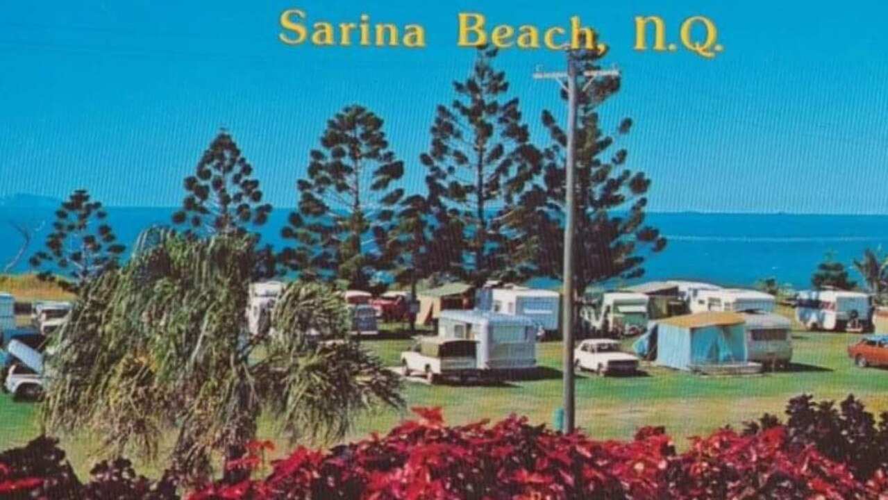 Sarina Beach resident Gaynor Jenkins said her late father-in-law planted the Norfolk Pines at Sarina Beach in the 1960s. Picture: Sandpiper Motel