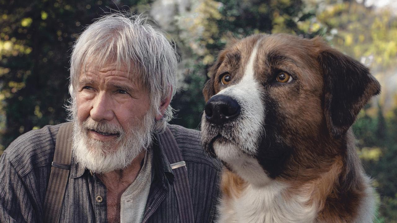 Grizzled Harrison Ford and this canine companion Buck in The Call of the Wild.