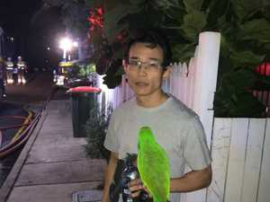 Parrot saves man from burning house