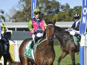 Grafton runner strides out to Jacaranda Cup victory