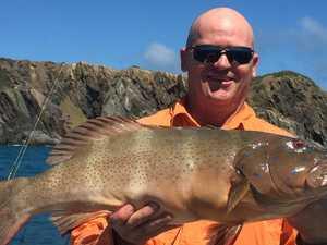 FISHING FRIDAY: Options aplenty after barras season closure