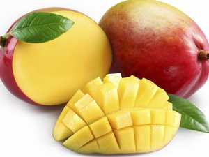 Thousands of mangoes recalled after fruit fly find