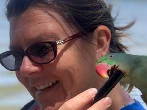 Police seek witnesses to Gympie mum's truck crash death