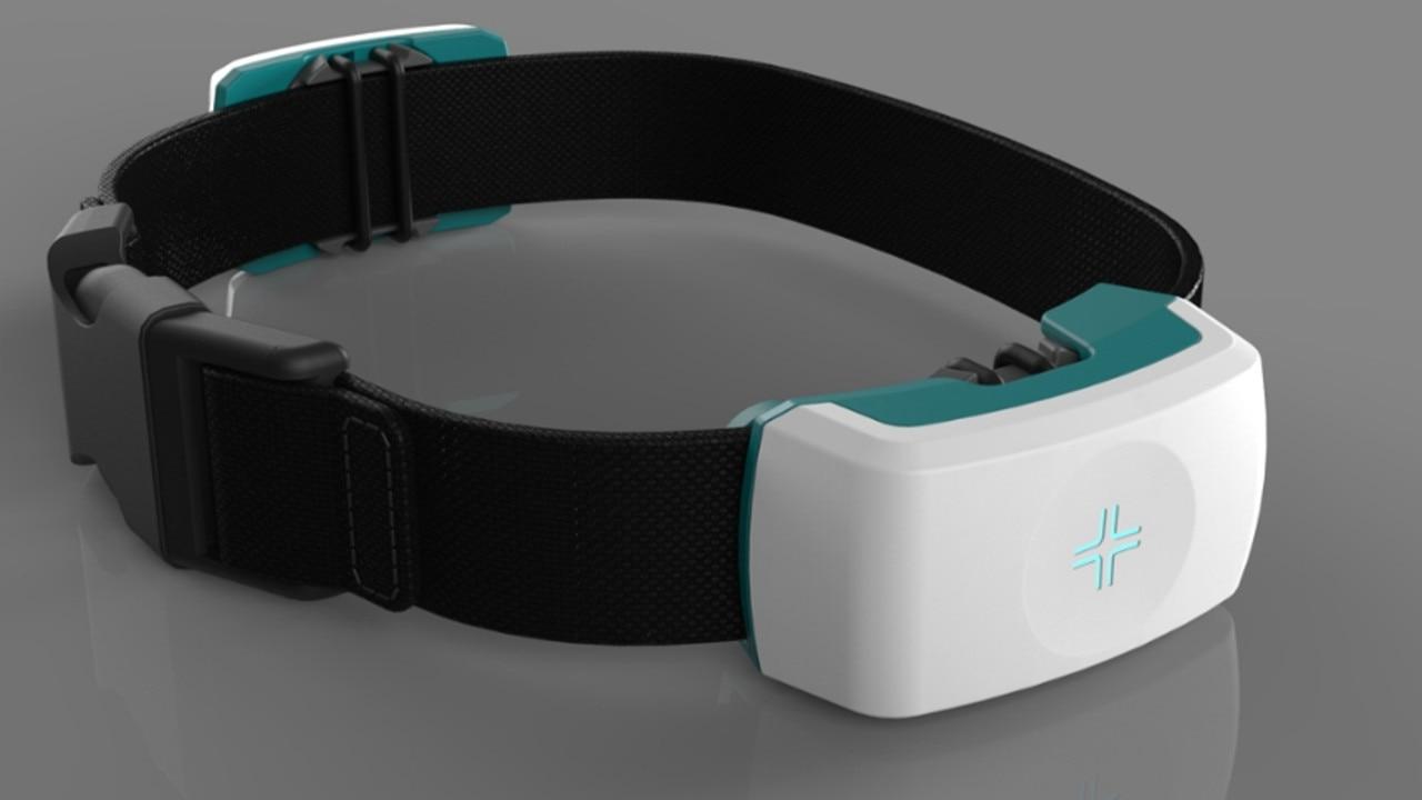 The CSIRO Companion Collar prototype. Picture: Supplied