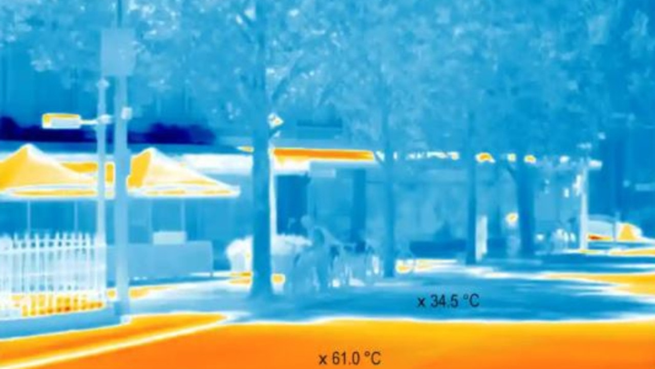This stretch of trees can reduce both the surface and air temperatures. Pictures: City of Melbourne.