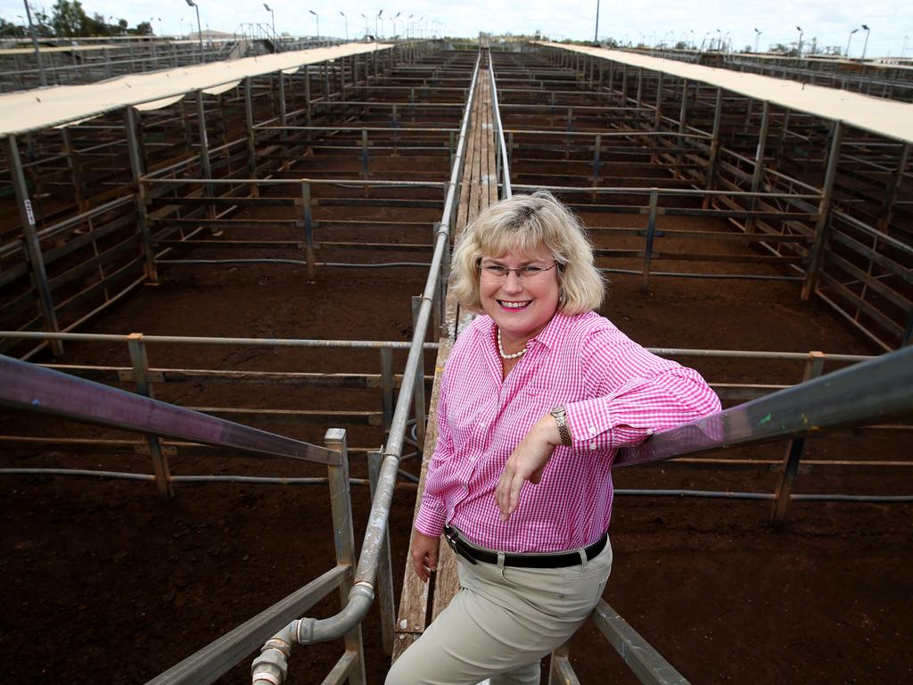 LNP Shadow Minister for Local Government Ann Leahy at the Roma Cattle yards. Pics Adam Head