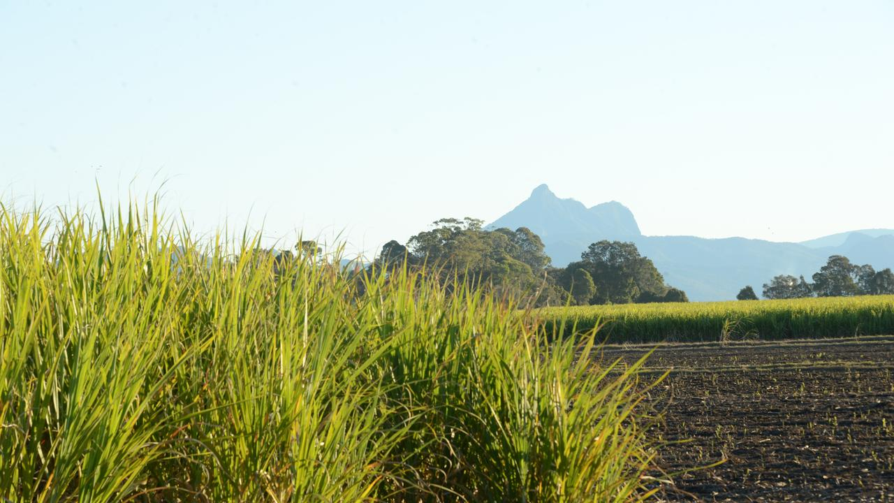 While unexpected repairs took place, Proserpine Sugar crushed more than 81,000 tonnes of cane. Picture: Liana Turner