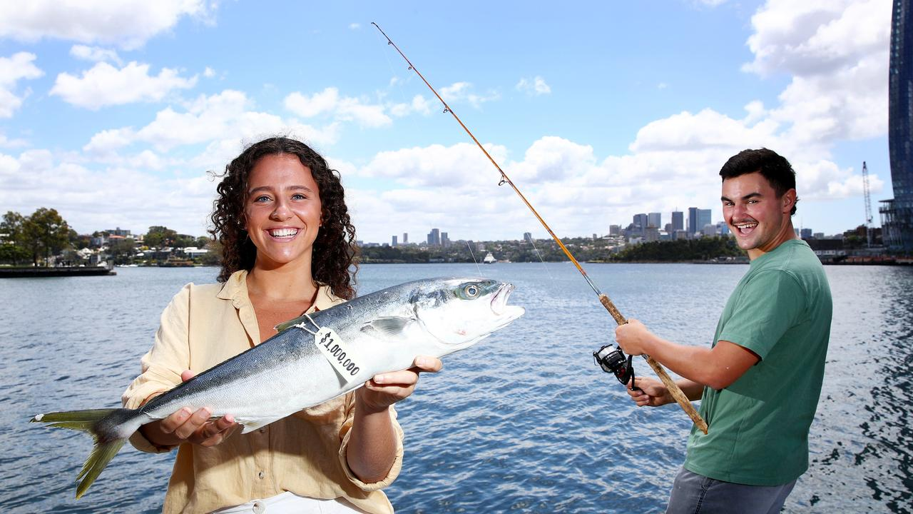 Ben Buckland and Nicola Muddle hold a Kingfish like the one that will be tagged and released in Sydney Harbour as part of the million dollar fish promotion. Picture: Toby Zerna