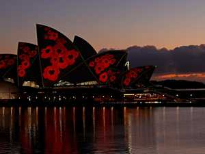 Opera House lit up in sea of poppies
