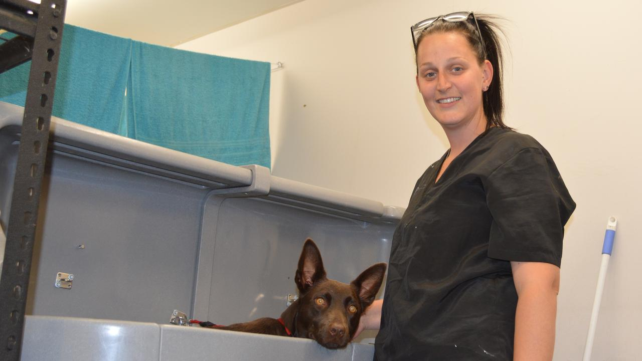 Michelle Burnham and her pup take a bath at new Warwick groomers Pawz R Us.