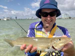 Scott Hillier: How to catch big whiting