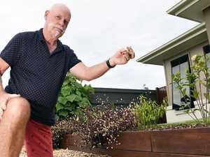 Stone cold: Couple warned remove pebbles or risk $6k fine
