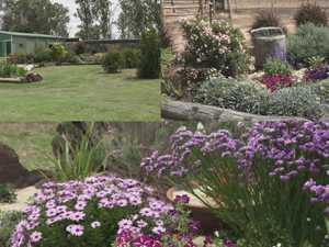 Clermont garden takes top prize