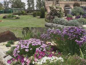 CQ green thumbs awarded for their treasured gardens