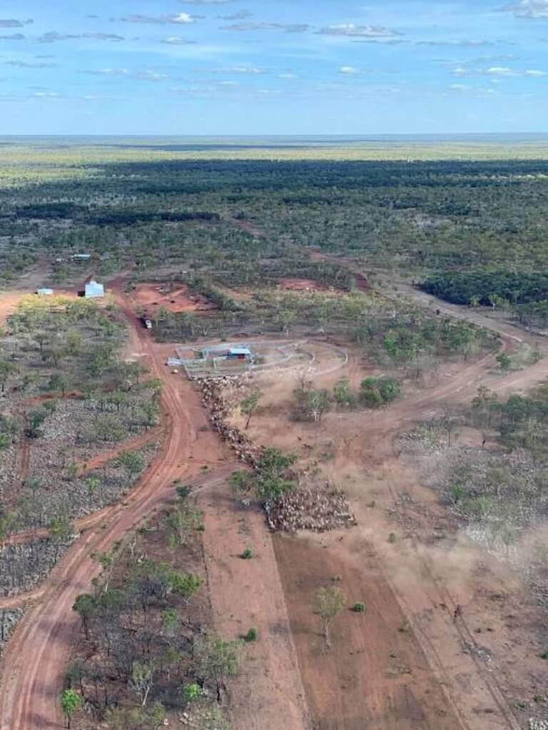 Murranji Station, near Daly Waters, covers 447,500 hectares. Picture: Supplied by RuralCo Property