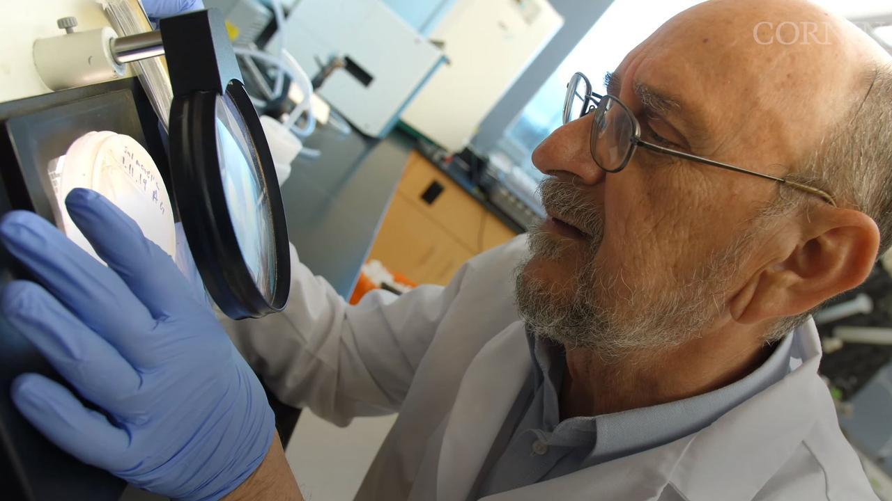 Professor Charles Gerba in the lab.