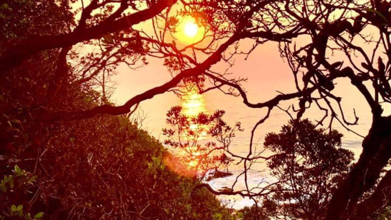 A Korora sunrise.