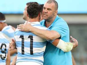 Why the Wallabies should fear Cheika