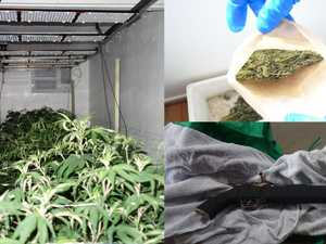 17 arrested after major crackdown on illegal marijuana