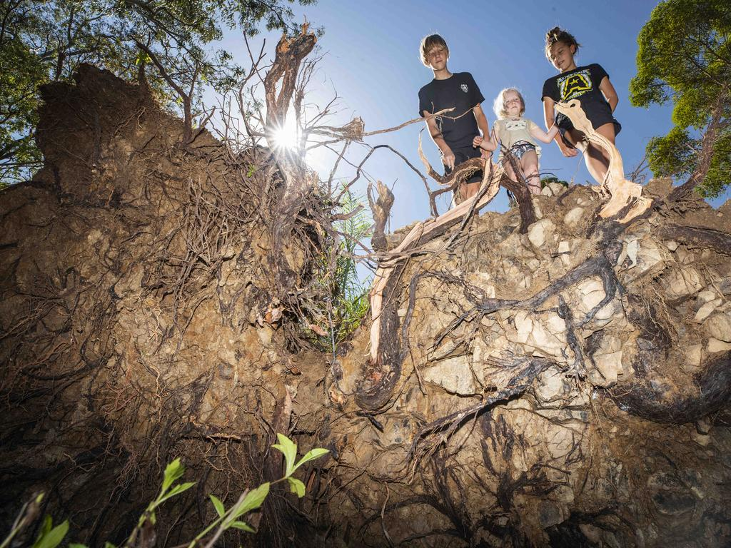 Siblings Tao, 6, Zion, 13 and Shekinah Johansen, 10, inspect the roots of a giant fallen gum tree at their property at Ninderry after storms hit earlier this year. Picture: Lachie Millard