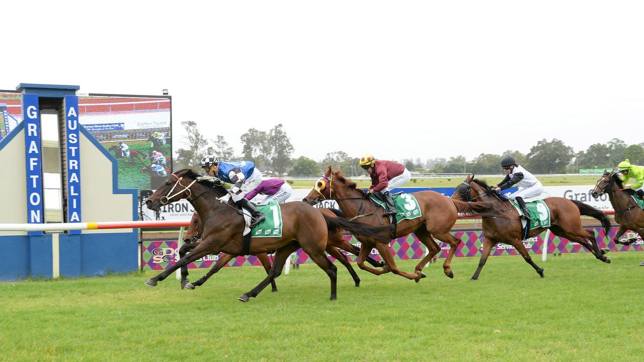 Urbino wins Race 1 at the Clarence River Jockey Club. Photo: Trackside Photography