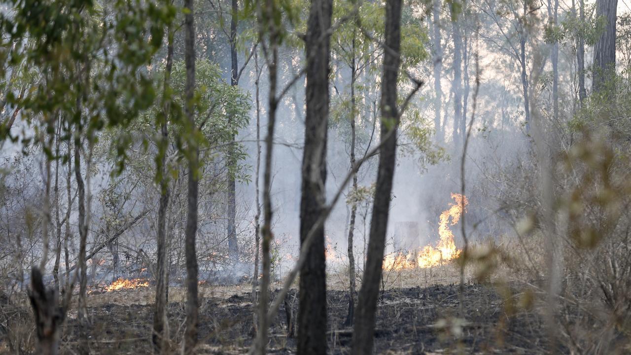 Bushfire in Spicer Gap in November last year.