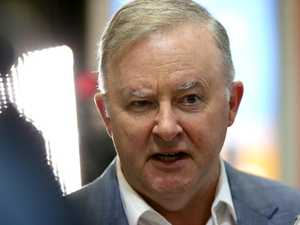 Three new cases as Albanese backs Palaszczuk's border blockade