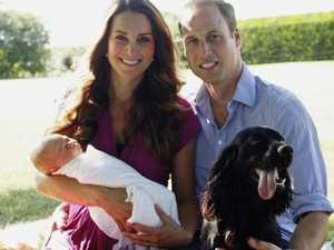 Royals heartbroken over dog's death