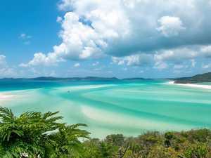 Kiwi wanderlust to turn our backyard into the next Fiji