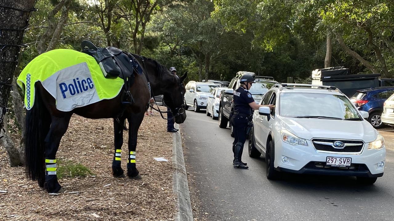 Police horses patrol Noosa roads during Schoolies Week.