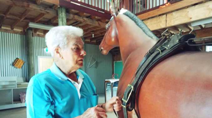 A long journey to give new life to Lawrence horse