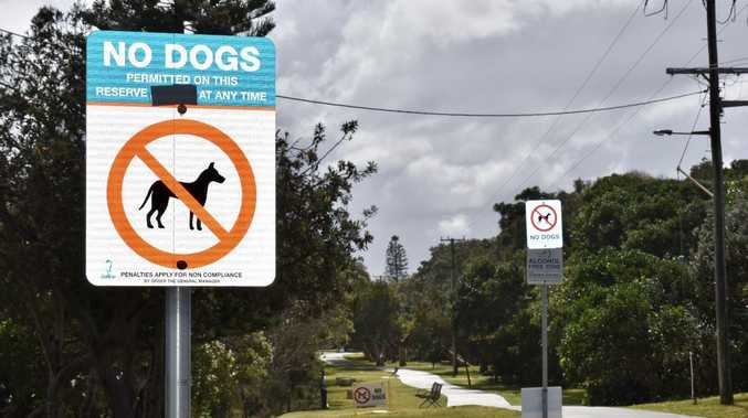 Council's 'to do' list: From dog beach access, to CCTV