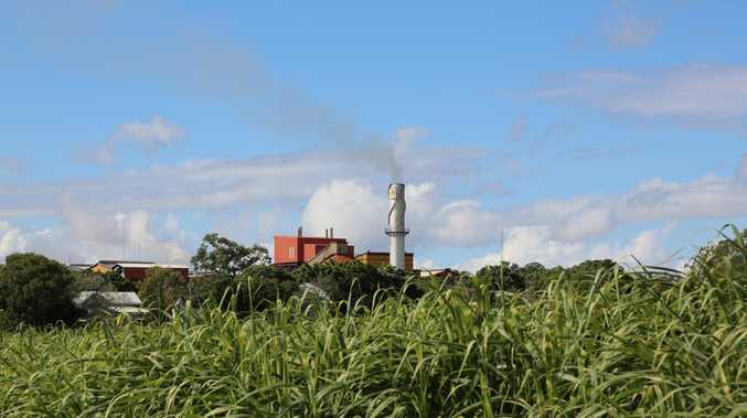 UPDATE: Mill closure letter reveals plan for M'boro cane