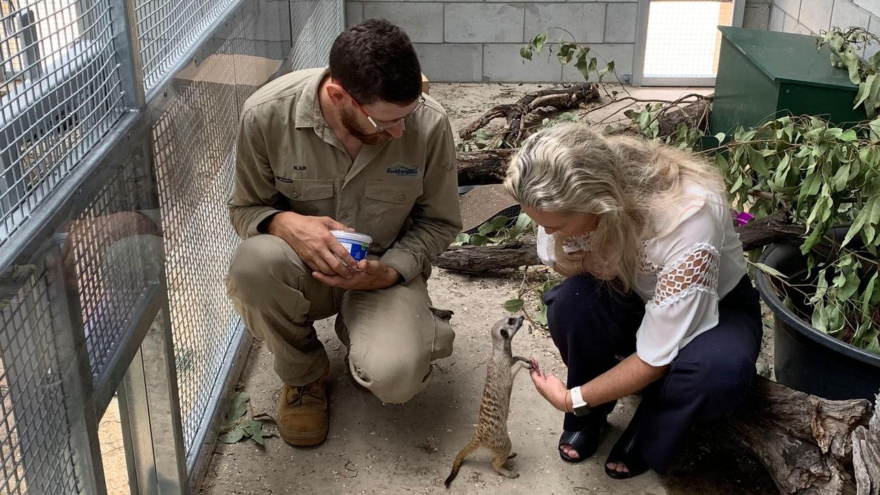 Rockhampton Zoo's Blair Chapman and Councillor Cherie Rutherford with the new meerkats.