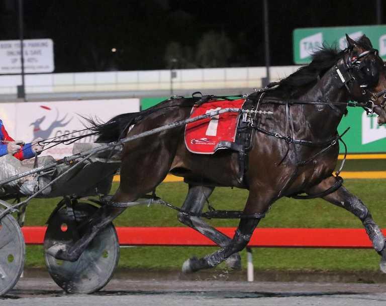 Grant Dixon. Picture: Hamish Blair/Racing Queensland