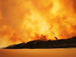 Govt did 'precious little' to stop Fraser Island fire