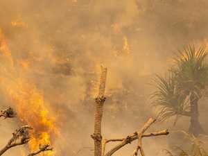 Conservationist pushes to change fire rules as island burns