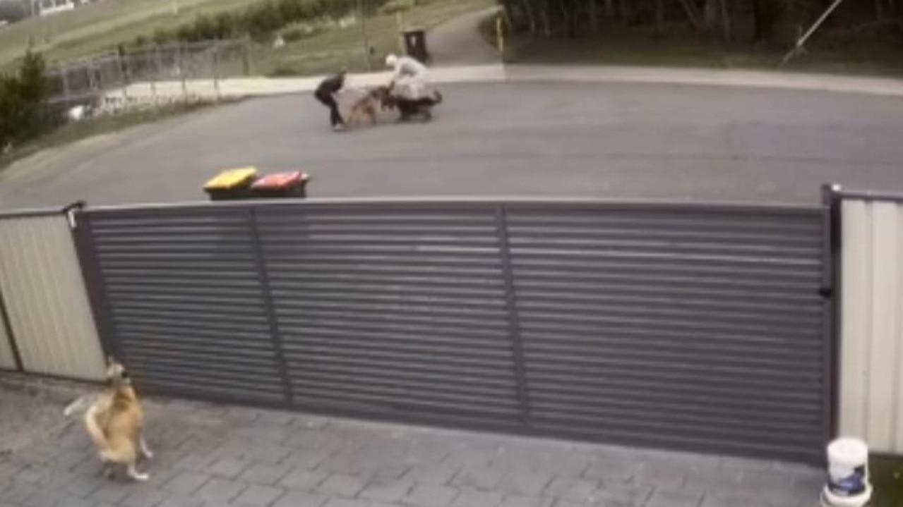 A still of the incident captured on CCTV. IMAGE: Bec Bowen.