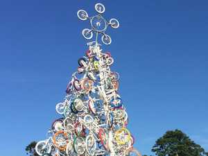 Which one is Lismore's best recycled tree?