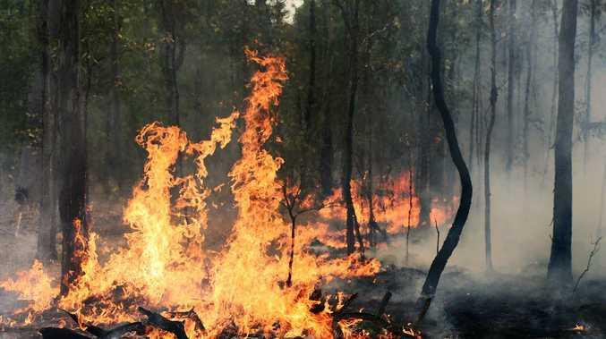 Firies battling 500m-wide fire front in scrubby terrain