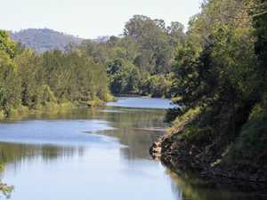 Miracle discovery on the banks of the Mary River